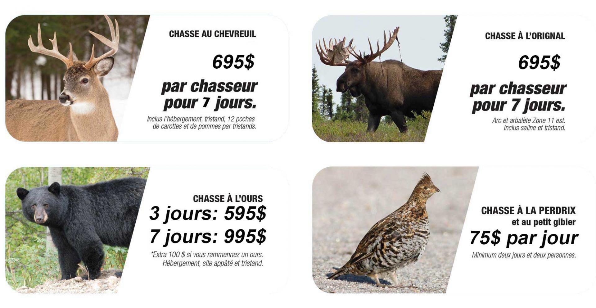 nouveau-chasse-banniere-francais.png